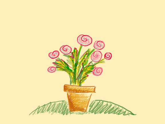 flowers in a ceramic pot
