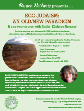 Eco-Judaism 2012 Flyer