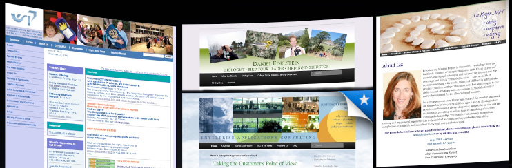 Design for websites - customize WordPress templates with banners and more.
